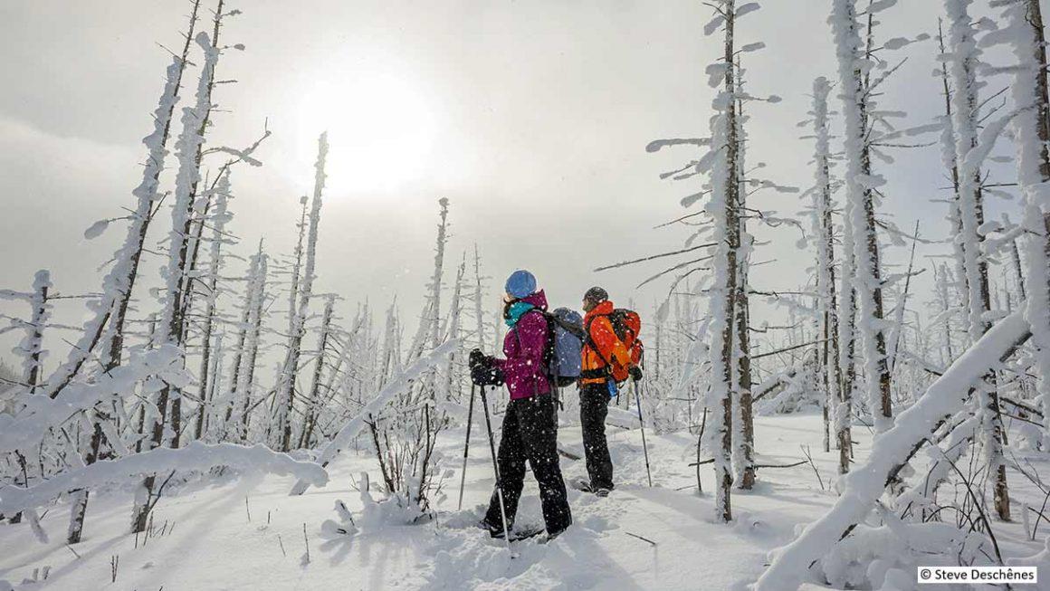 Top 5 des randonnées hivernales à faire dans Charlevoix